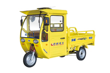van cargo tricycle for heavy duty