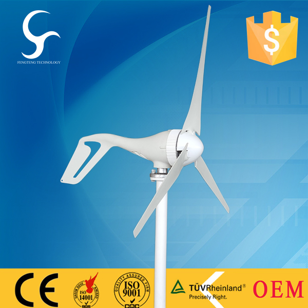 Chinese hot sale 100w windmill