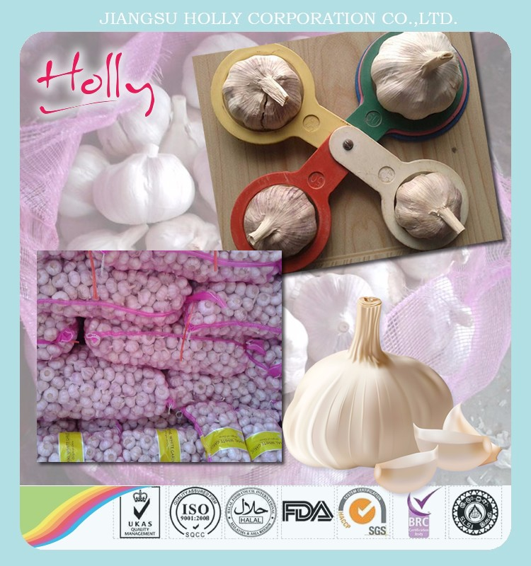 2017 China cheap garlic/naturel ali/fresh garlic/natural garlic for wholesale