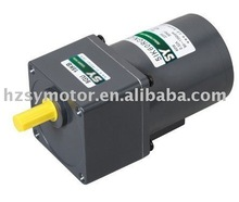 60W induction motor