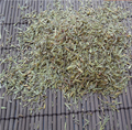 Dried Thyme Extract/ fresh dried thyme