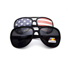 Custom Polarized Manufacturer Plastic Colored Sunglasses Aviator Sunglasses Glas DLC9021