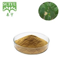 Healthy food cactus powder