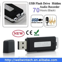 Mini hidden voice recorder usb flash driver