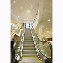 Small Home Escalator Cost With Cheap Price From China