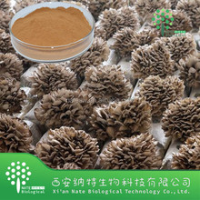 Healthy care food 90% Polysaccharide from Grifola frondosa extract Powder