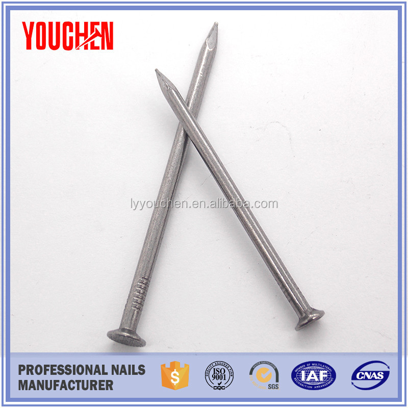 Common iron wire nail/chair nails