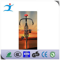 fixed gear race bike/fashion fixed gear bike outdoor sport bicycle `