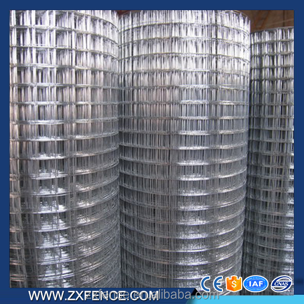 China cheap low carbon steel wire , new design welded rabbit cage wire mesh