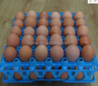 plasic transfering egg tray