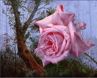 Heavy Duty Glossy Classicism Decorative Pink Flower Painting