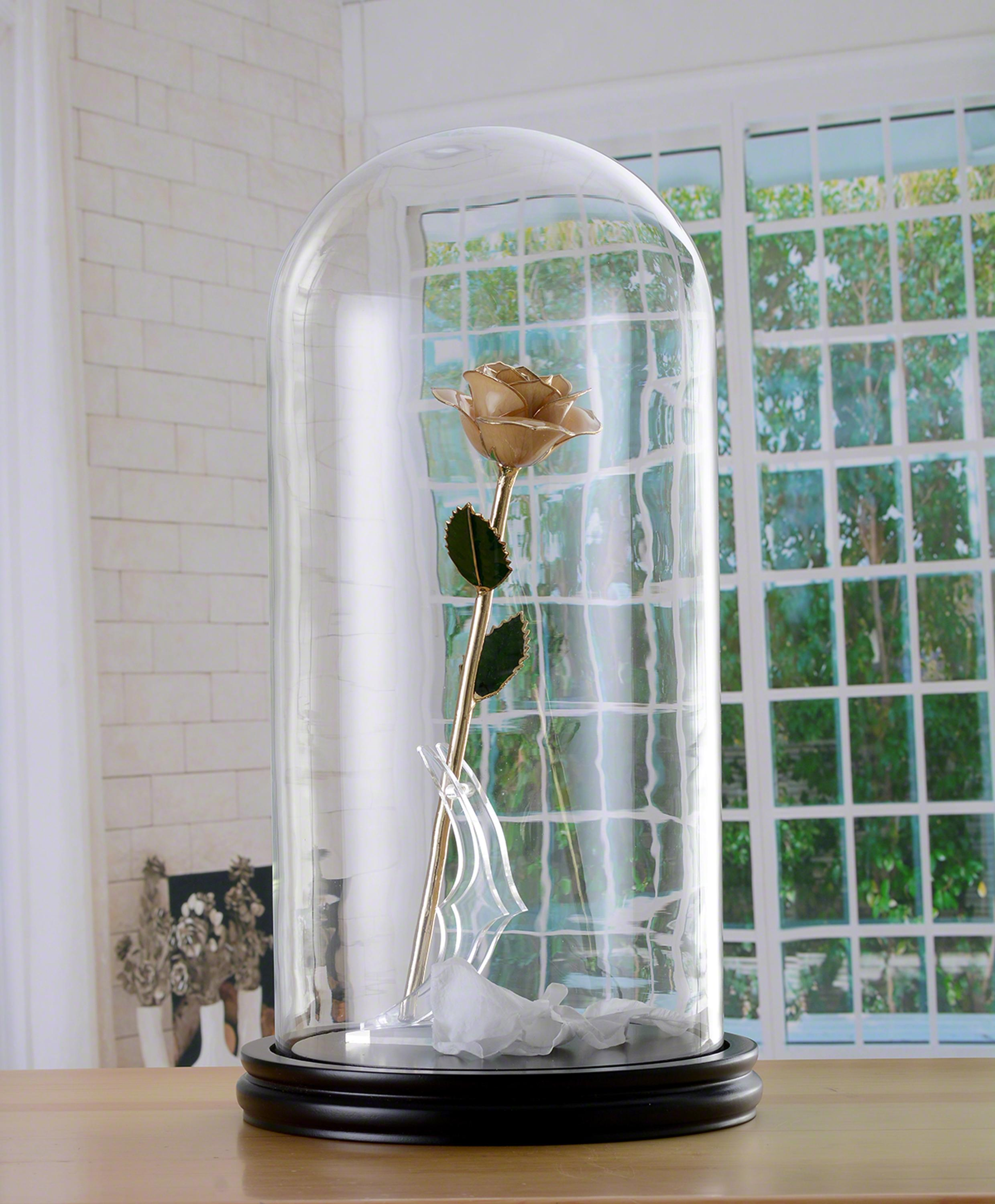 D20xH40cm-Glass-Dome-With-Wood-Base--Natural-White-24K-Plated-Gold-Preserved-Rose-.jpg