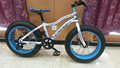 New style 26'' Snow Bicycle SL-SN26106