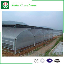 Best Price Solar Commercial Polycarbonate Hydroponic Irrigation Greenhouse