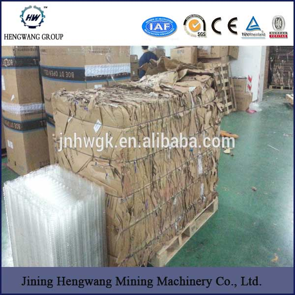 Wrap Around Carton Packing Machine/ Case Packer for Bottle