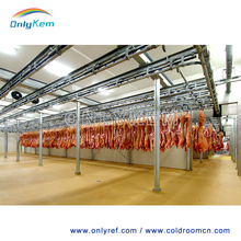 freezer rooms for meat / chicken processing storing