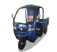 china 1000w Electric tricycle cargo used with closed box for sale