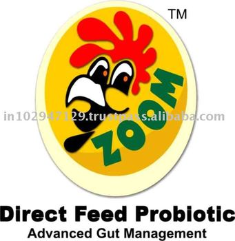 Animal feed probiotics