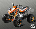 110CC 125CC QUAD WITH REVERSE CE APPROVED