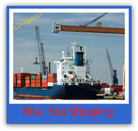 Competitive sea freight forwarder logistics service from China to PORT SAID--Sophie