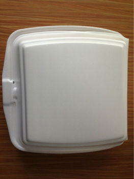 Disposable Plastic Lunch Container