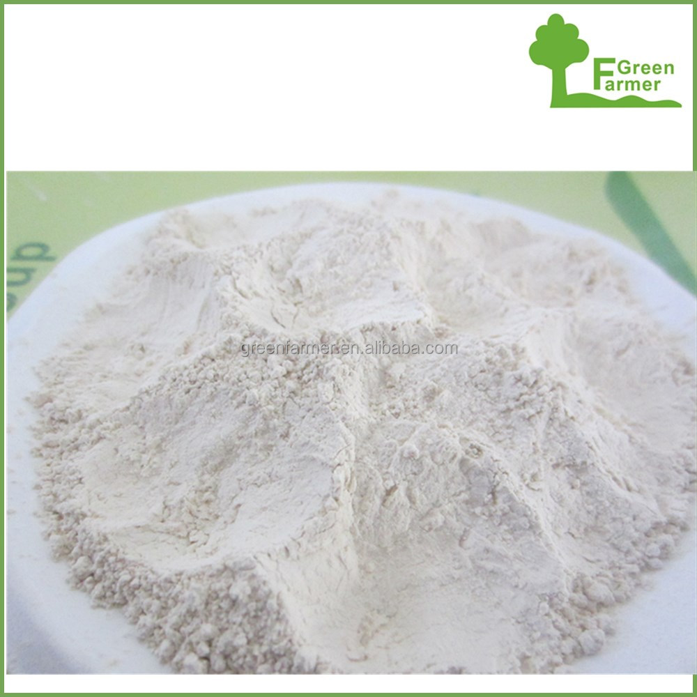 China Hebei cheap price dehydrated garlic powder