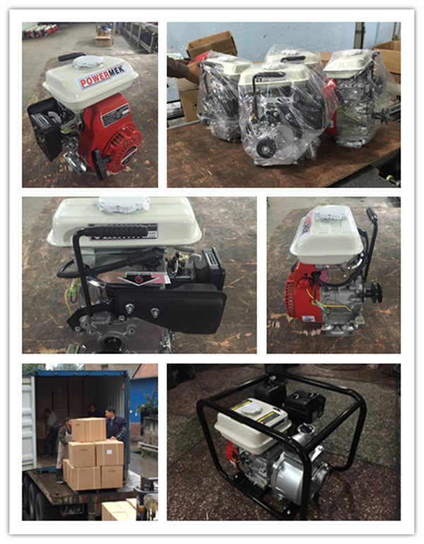Hot Sale D type Starter Petrol Gasoline Engine