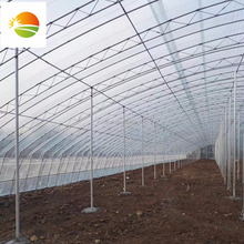 commercial glass greenhouse used for vegetables flowers plants