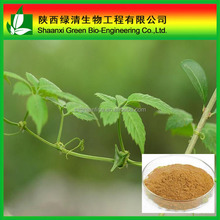 High Quality Gypenosides 99%/fiveleaf Gynostemma Extract/regulate Cholesterol,Antioxidant,Benefit Digestion/Gynostemma Extract