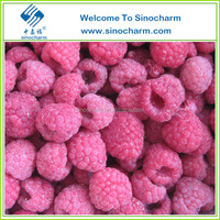 Supply Bulk Variety Berry Frozen With Good Price China
