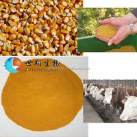 high protein corn gluten meal feed