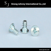 White zinc plating tapping screw,screw making machine,main for export