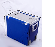 28L Foldable Cooler Box Inflatable eskies Ice Box