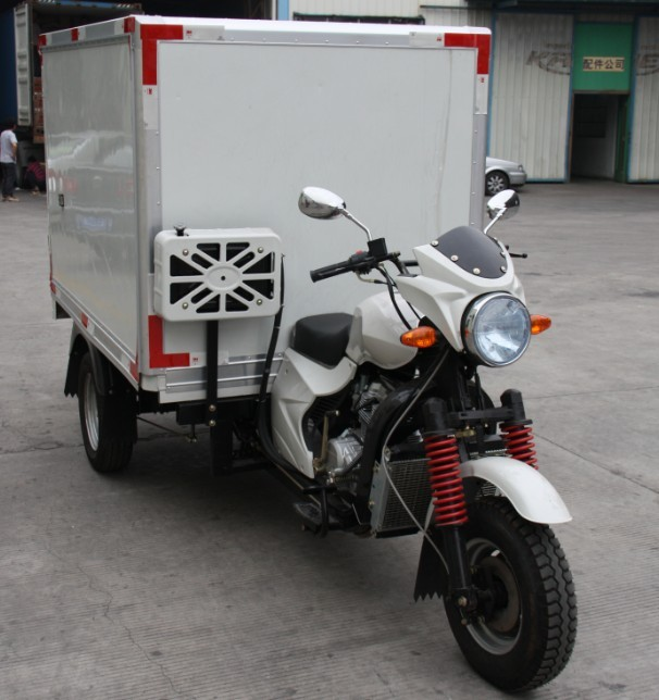 Hot sale new style 3 wheel cargo truck 250cc tricycle
