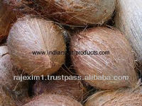 Fresh Indian Coconut Export Quality