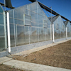 Greenhouses / greenhouse polycarbonate Low price
