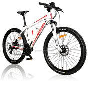 26'' Aluminum Alloy electric bicycle