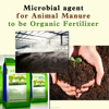fermentation make bacteria for poultry manure composting