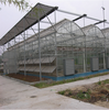 Garden Used White Agricultural Greenhouse Tunnel