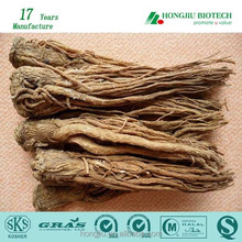 Hot Wholesale High Quality Angelica (Dong Quai) Extract