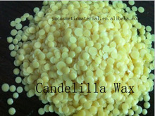 Popular candelilla wax