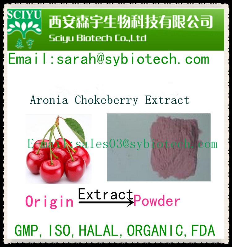 Hot Sale Aronia Chokeberry Extract Vitamin C 17% 25% By HPLC
