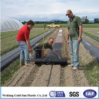 agricultural ground cover fabric,low maintenance ground cover,waterproof mat