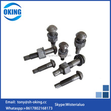 China hardware fastener high Tensile tc shear bolt