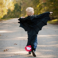 ShiJ Free Shipping TO US Novelty KIDS Bats Cloak Costumes For Kids