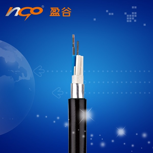 GYDTS anti-rodent fiber optic cable outdoor stranded single mode layer armored 8core optic cable GYTS-8B1