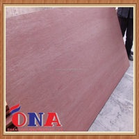 High quality poplar core red hardwood plywood sheet