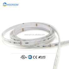 WEERSOM LED STRIP 5050RGB P943 IC DC24V SPI
