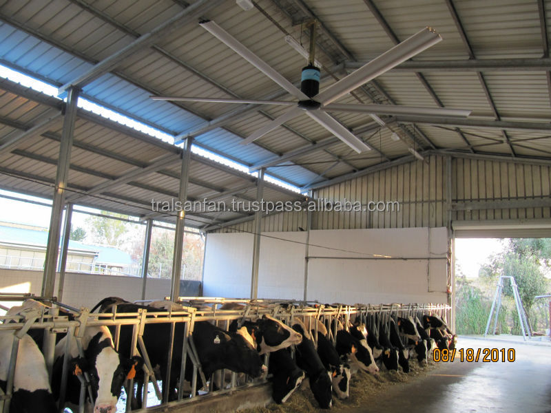 Dairy Poultry Farm Air Cooling Big Exhaust Fan with CE Certificate