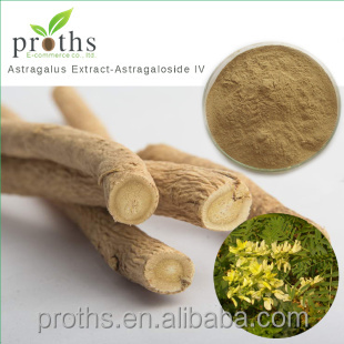 Top quality astragalus membranaceus in bulk